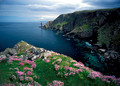 old man of stoer and sea pinks on ledge assynt peninsula